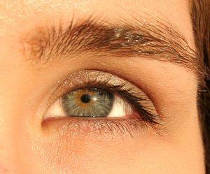 microinjertos de cejas