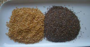 semillas-de-chia-y-semillas-de-lino
